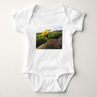Body Para Bebê Wildflower amarelo que cresce em pedras no por do