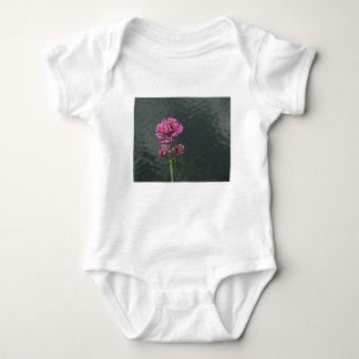 Body Para Bebê Wildflowers contra a superfície da água de um rio