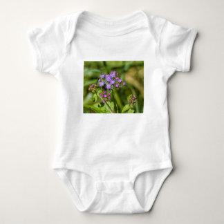 Body Para Bebê Wildflowers roxos do Ageratum
