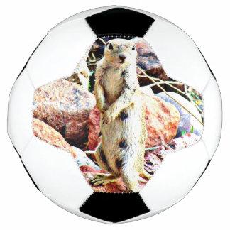 """Bola De Futebol De """"bola de futebol do esquilo à terra Charlie"""""""