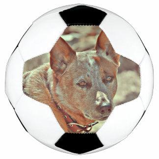 """Bola De Futebol De """"bola de futebol vermelha Boomer Heeler"""