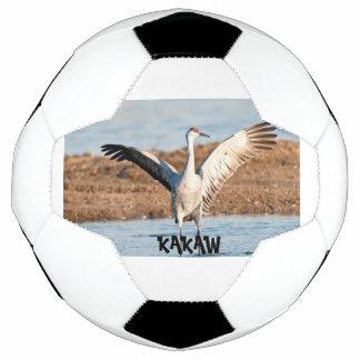 Bola de futebol de KAKAW