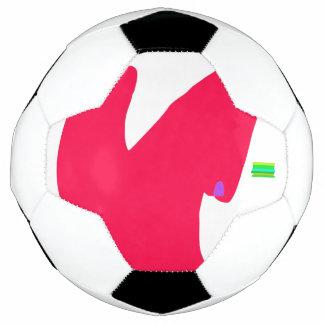 Bola De Futebol Entusiasmo