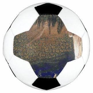 Bola De Futebol Floresta que flutua em reservas de água