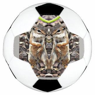 Bola de futebol gêmea de Mikey