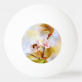 Bola De Ping-pong Abelha em uma flor da cereja