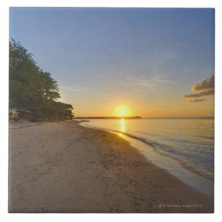 Bola dourada de Sun que ajusta-se sobre a ilha