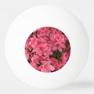 Bola Para Ping Pong Arbusto de florescência cor-de-rosa brilhante na