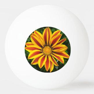Bola Para Ping Pong Foto alaranjada bonita da flor de Sun