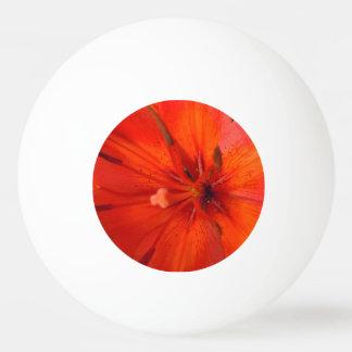 Bola Para Tênis De Mesa Lírio alaranjado & vermelho impetuoso II
