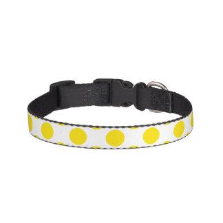 Bolinhas amarelas correias para cachorros
