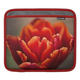Bolsa De iPad Foto vermelha bonito das pétalas da tulipa.