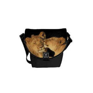 Bolsa mensageiro dos pares do leão a mini (ou