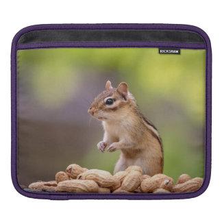 Bolsa Para iPad Chipmunk com amendoins