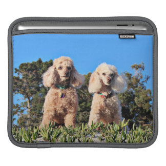 Bolsa Para iPad Lixívia - caniches - Romeo Remy