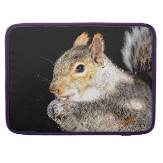 Bolsa Para MacBook Esquilo que come uma porca