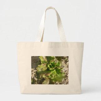 Bolsa Tote Grande Alface fresca que cresce no campo. Toscânia,