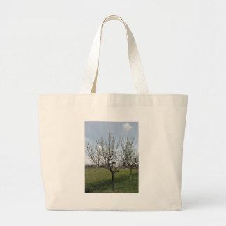 Bolsa Tote Grande Árvore de pera de florescência no jardim Toscânia,