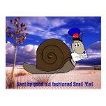 Bom snail mail antiquado cartao postal
