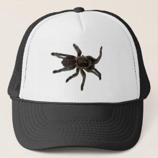 Boné Amantes da aranha