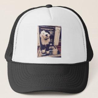 Boné Amor do Sheepdog