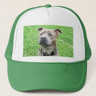 Boné Assento de Staffordshire bull terrier,