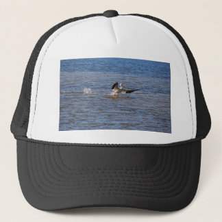 Boné Aterragem do pelicano