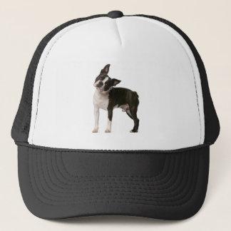 Boné Buldogue francês - cão de filhote de cachorro -