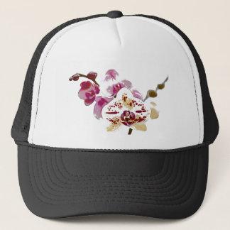 Boné Buquê da flor da orquídea do Phalaenopsis