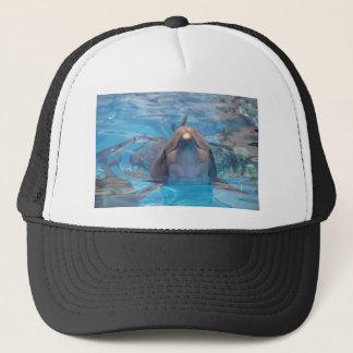 Boné Cabeça do golfinho de bottlenose