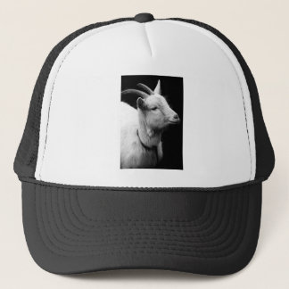 Boné cabra