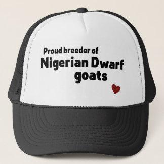 Boné Cabras nigerianas do anão