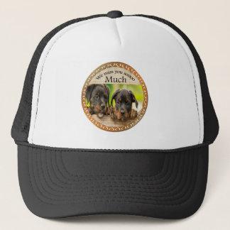 Boné Cães de filhote de cachorro bonitos pretos de