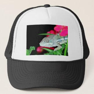 Boné camaleão da pantera