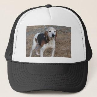 Boné Cão de Billy