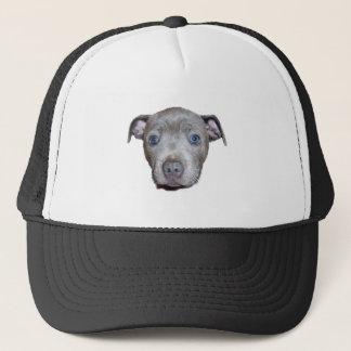 Boné Cara do filhote de cachorro de Staffordshire bull