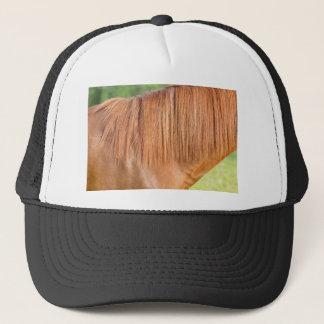 Boné Cavalo marrom árabe na ideia do fim do pasto da