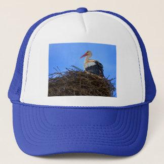 Boné Cegonha branca européia, ciconia, no ninho