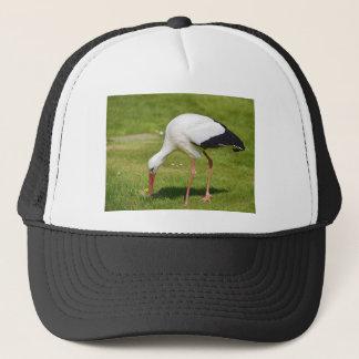 Boné Cegonha branca na grama