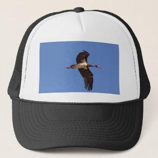 Boné Cegonha preta (negro do Ciconia) em vôo