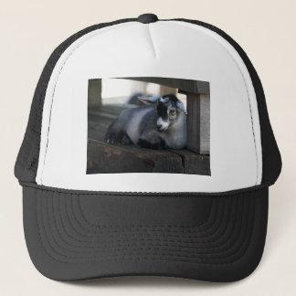 Boné Chapéu da cabra