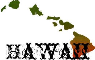 Boné Chapéu do camionista de Rasta Havaí c9aaa1a14a5