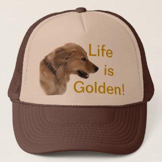 Boné Chapéu do cão do golden retriever