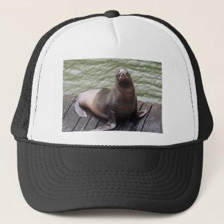 Boné Chapéu do leão de mar