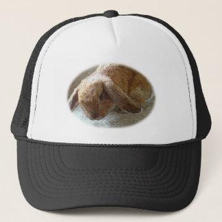 Boné Chapéu orelhudo do coelho de Holland Lop