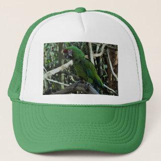 Boné Chapéu verde do macaw