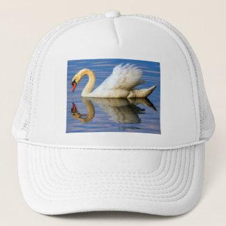 Boné Cisne muda, olor do cygnus