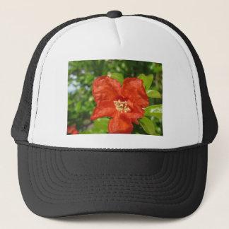Boné Close up da flor vermelha da romã