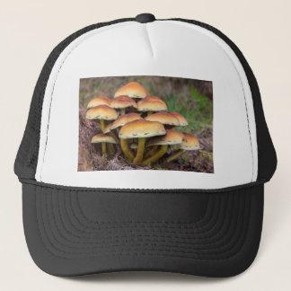 Boné Cogumelos marrons do grupo na floresta da queda