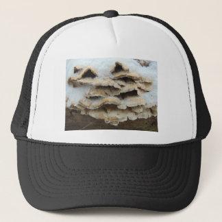 Boné Cogumelos no inverno